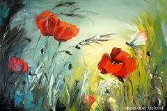 Coquelicots Mary