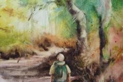 Sentier forestier 5