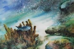 Serenite-aquatique